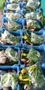 winter-veg-boxes