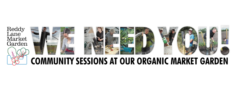 community-sessions-banner-fb
