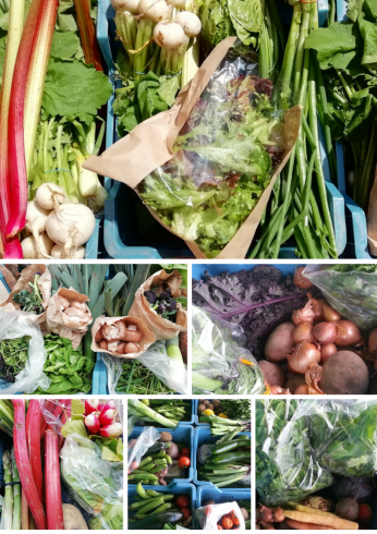 veg boxes images only